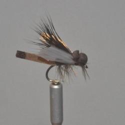 SCP 08 - Avispa de la madera