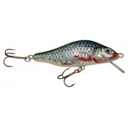 Whitefish (LIQUIDACIÓN)