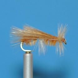 CEC 07 - Tricóptero canela...
